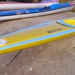 Dolphin double ski